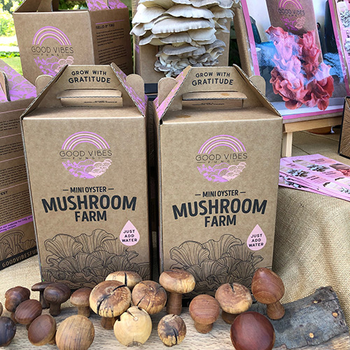hawkes-bay-farmers-market-good-vibes-fungi