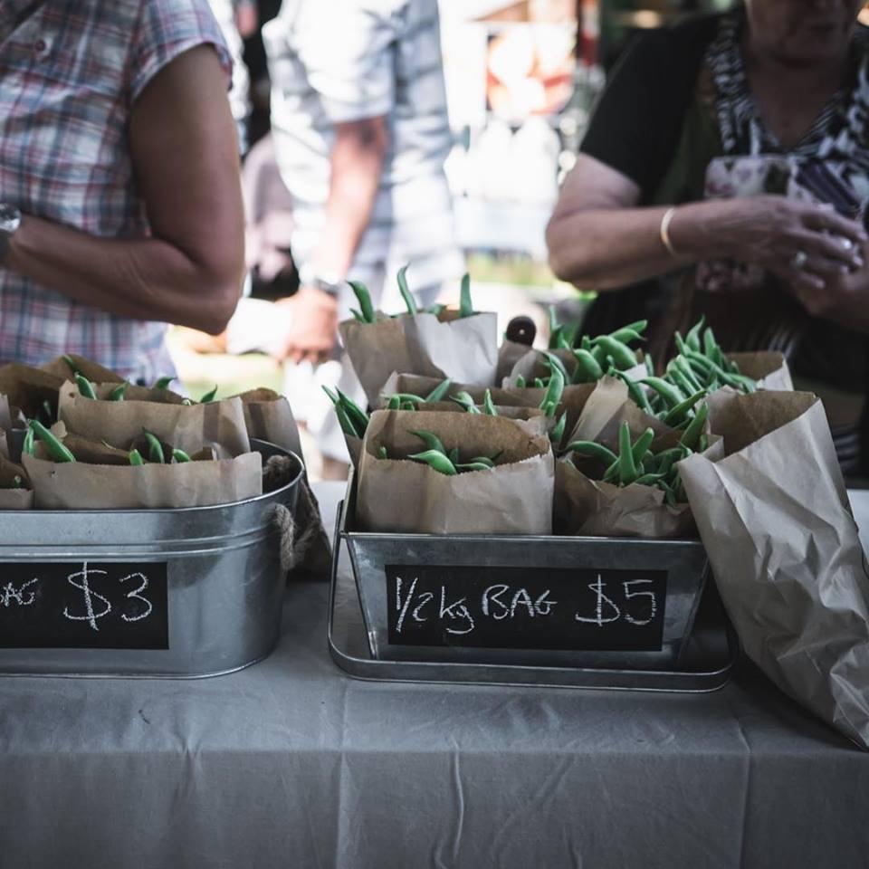 hawkes-bay-farmers-market-pomona-gardens-beans