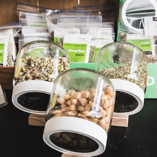 hawkes-bay-farmers-market-wright-sprouts